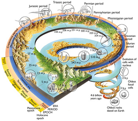 Radiometric dating and geologic ages 7